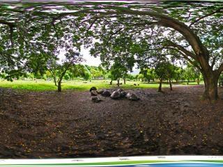 卡塞拉自然公园虚拟旅游