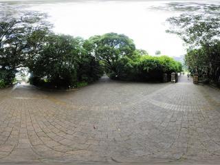 克斯藤布斯植物园(四)全景
