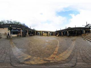 克斯藤布斯植物园虚拟旅游