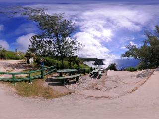 鸟岛-1全景