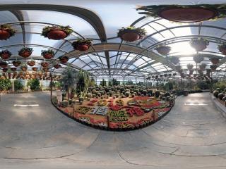 世界花卉大观园虚拟旅游