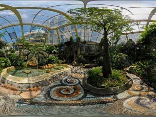 北京—地下温泉雨林区