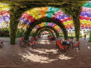 迪拜奇迹花园虚拟旅游