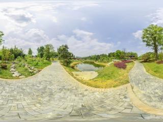 珍惜植物园2