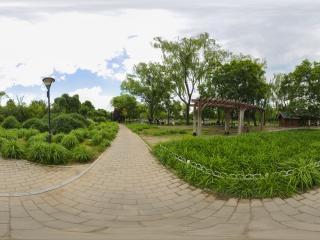 初夏—玉渊潭公园(三)全景