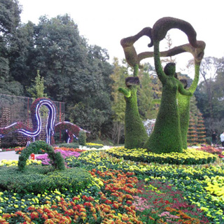 杭州植物园虚拟旅游