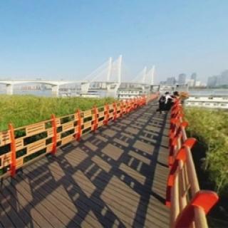 湖北省博物馆虚拟旅游
