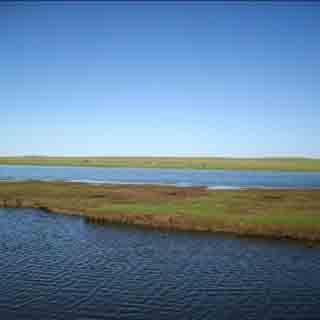 南海湿地景区虚拟旅游