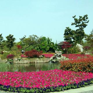 万花园虚拟旅游