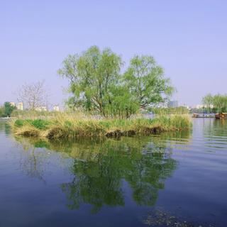 大明湖虚拟旅游