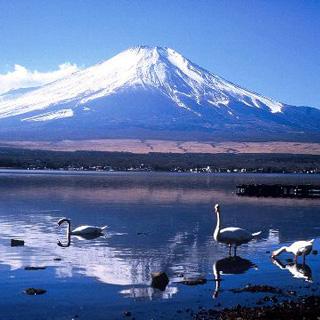 日本虚拟旅游